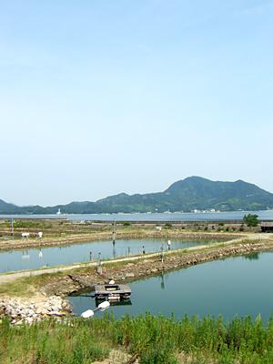 http://shimanami.main.jp/images/Img/1311665137/
